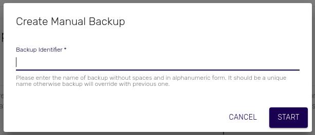 Manual Backups