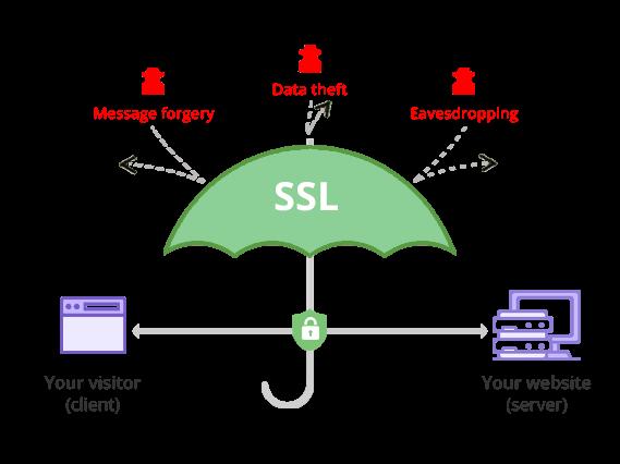 Berikan Keamanan Pengunjung Blogmu dengan SSL Certificate 3