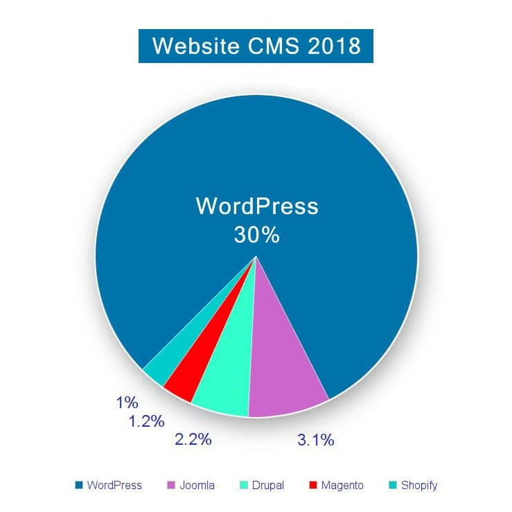 Why Choose WordPress